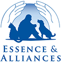 Essence et alliances
